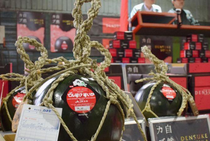 черный арбуз дэнсукэ