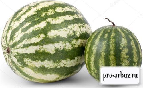 Большой или маленький арбуз