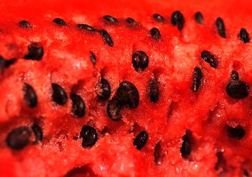 семечки арбуза калорийность