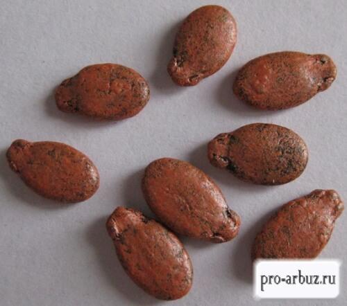 Семена арбуза Эврика F1
