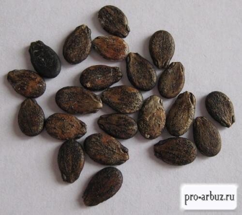 Семена арбуза Карапуз