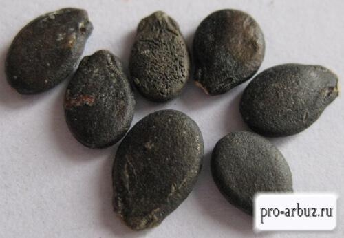 Семена арбуза Мармеладный