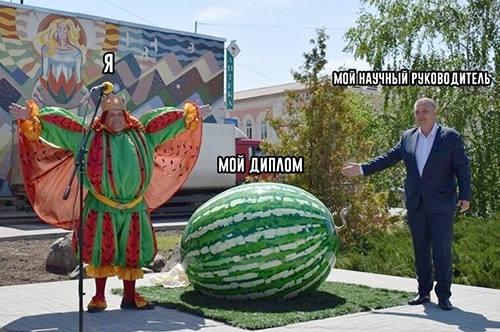 мем арбуз в Камышине