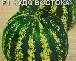 Арбуз Чудо Востока, 5 г Седек