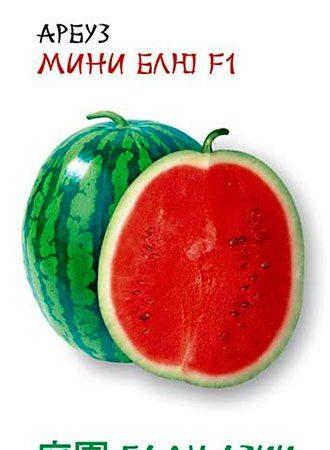 Арбуз Мини Блю F1, 5 шт