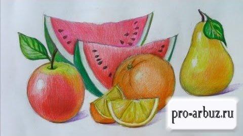 Арбуз это фрукт
