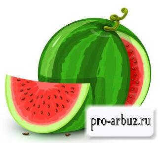 Арбуз - ягода, фрукт или овощ