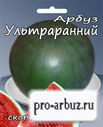 Выращивание арбуза Ультраранний