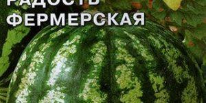 Арбуз Пекинская радость Фермерская F1, 1 г Седек