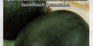 Арбуз Сахарный Карапуз, 0,5 г Золотая Сотка Алтая