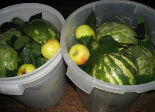 солить арбузы в бочке