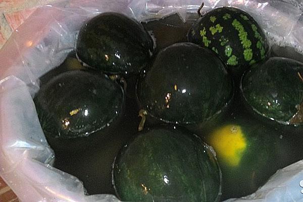 арбузы соленые в бочке